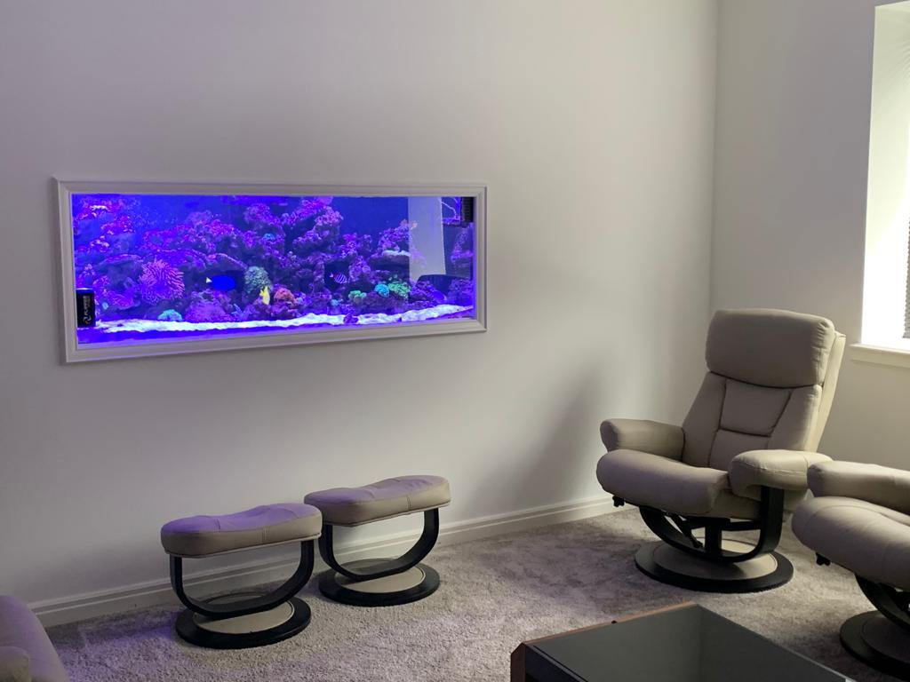 Wall Aquarium